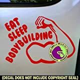 Best Gorilla Decals Bodybuilding Books - EAT SLEEP BODYBUILDING Vinyl Decal Sticker D Review