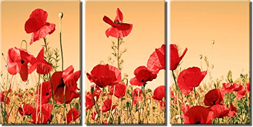 Picture Sensations Framed Huge 3-Panel Floral Art Flower Field Red Poppy Giclee Canvas Print ()