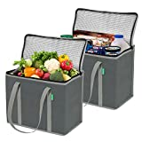 Insulated Grocery Shopping Bags (2 Pack-Gray)
