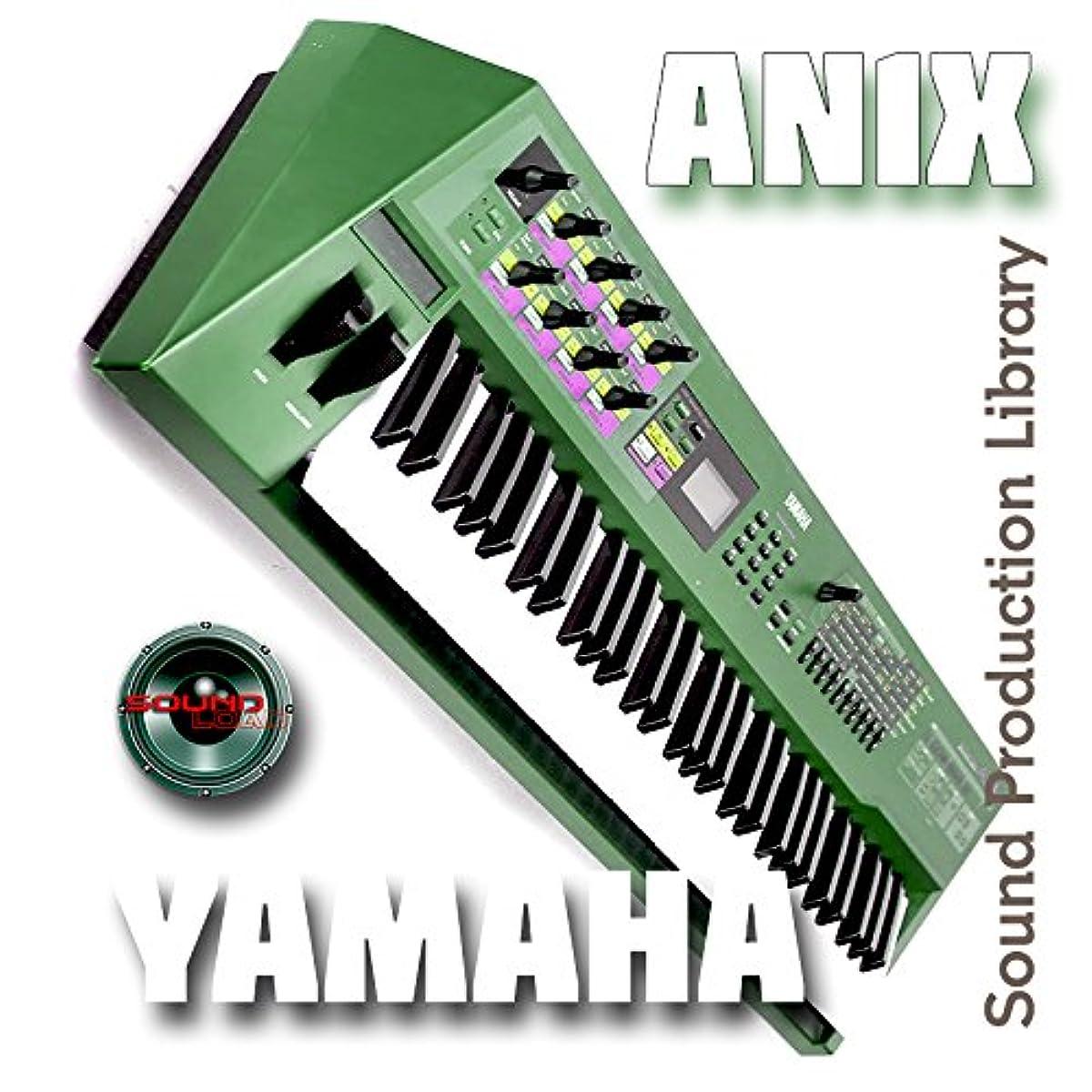 [해외] YAMAHA AN-1X - THE VERY BEST OF - HUGE SOUND LIBRARY ORIGINAL SAMPLES IN WAVES FORMAT ON CD
