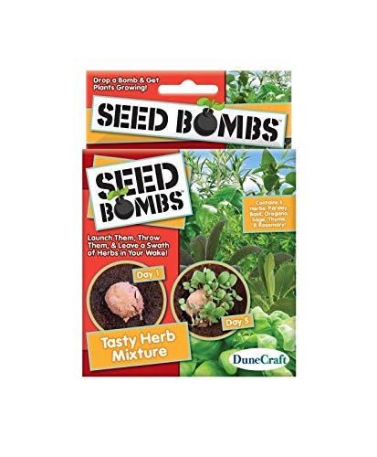 Shoppy Star Semillas DE GERMINACION: Caja de Seed Bombs Sabrosa Mezcla de Hierbas Perejil Albahaca Orégano Sabio Tomillo y...