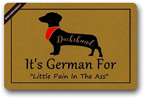 BXBCASEHOMEMAT Dachshund, It s German For Little Pain In The Ass Welcome Door Mat Funny Doormat For Indoor Outdoor Size 18 x 30 Inch