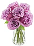 Bouquet of 6 Fresh Cut Purple Roses (Farm-Fresh, Long-Stem) with Free Vase Included