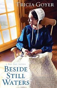 Beside Still Waters by Tricia Goyer ebook deal