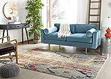 Safavieh Monaco Collection MNC222F Modern Bohemian Multicolored Distressed Rug (5' Square)