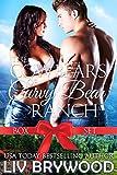 Bargain eBook - The Cowbears of Curvy Bear Ranch