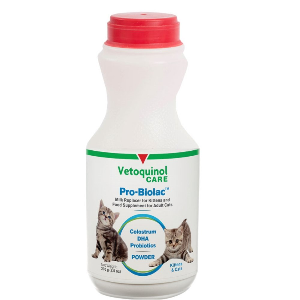 Vet Solutions Pro-Biolac Milk Replacement For Kittens, 50 gm