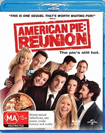 American Pie Reunion 2012 BluRay 720p 800MB Dual Audio ( Hindi – English ) ESubs MKV