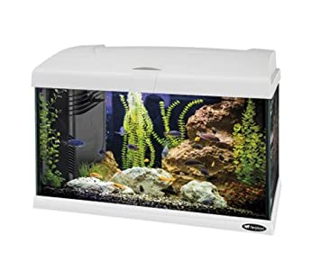 955d2a84f10 Ferplast Capri 50 Aquarium