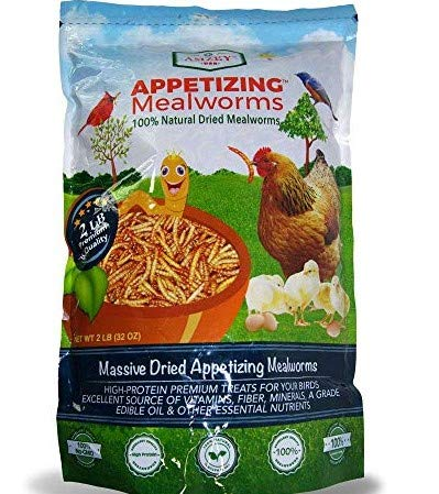 Appetizing Mealworms 1lbs-100% Non-GMO Dried Mealworms Great for Wild Birds, Chickens, Hens, Blue Birds, Woodpeckers, American Robin (2)