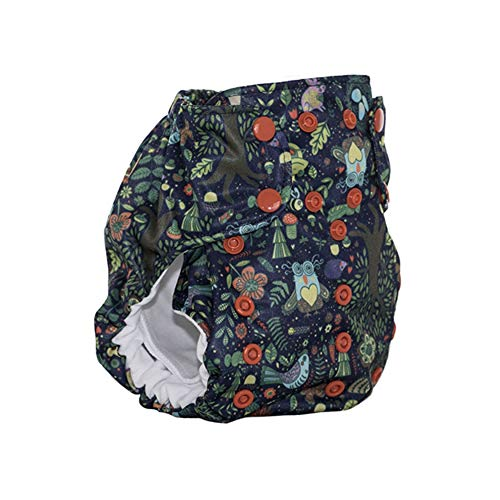 No Prep Organic Cloth Diaper - Smart Bottoms Dream Diaper 2.0 - Washable, Reusable - Natural Fiber Interior (Enchanted)