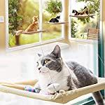 ZALALOVA Window Cat Seat, Cat Window Perch Hammock Space Saving Design w/1Pc Funny Cat Toy 2Pcs Extra Suction Cup Window Seat Cat Shelves All Around 360° Sunbath Holds Up to 50lbs for Any Cat Size 11