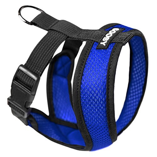 GOOBY Choke Free X Frame Soft Harness with Micro Suede Trimming for Small Dogs, Small, Blue ()