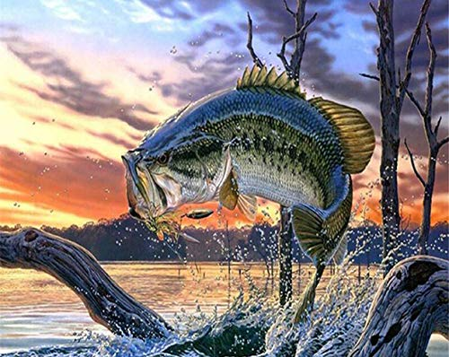 ABEUTY DIY Paint by Numbers for Adults Beginner - Flying Fish in The Lake Animal 16x20 inches Number Painting Anti Stress Toys (Wooden Framed)