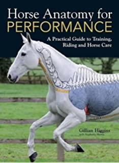 The Horse Anatomy Workbook A Learning Aid for Students Based on