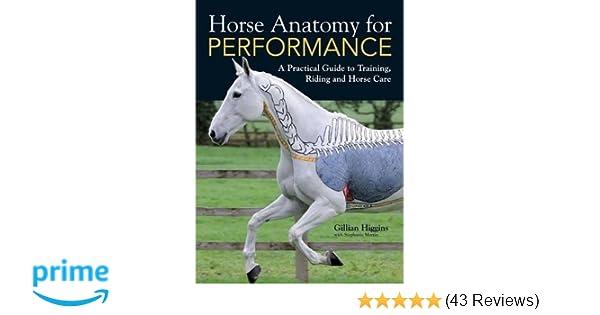 Horse Anatomy For Performance Gillian Higgins Stephanie Martin