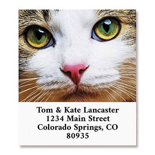 Cat Face Personalized Return Address Labels- Set of 144, Square Self-Adhesive, Flat-Sheet Labels, by Colorful Images