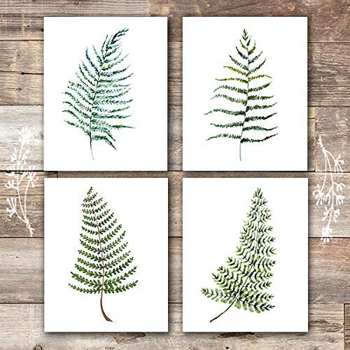 - Fern Wall Art - Botanical Prints - (Set of 4) - Unframed - 8x10s