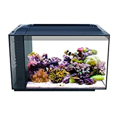 Don't let its size fool you. The Fluval Sea EVO packs the same performance features as a tank several times its size, but is small enough to fit on any desk or counter top. A super bright 14000 K LED provides optimal conditions for healthy co...
