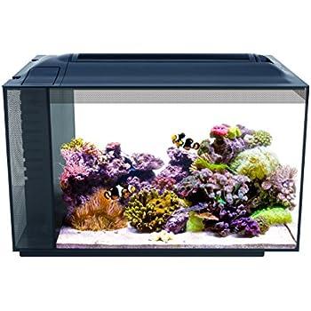 Amazon Com Fluval Flex 9 Gallon Glass Aquarium Replacement Tank