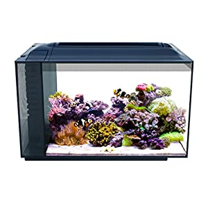 Fluval 10531A1 SEA EVO XII Aquarium Kit, 13.5 gal 2