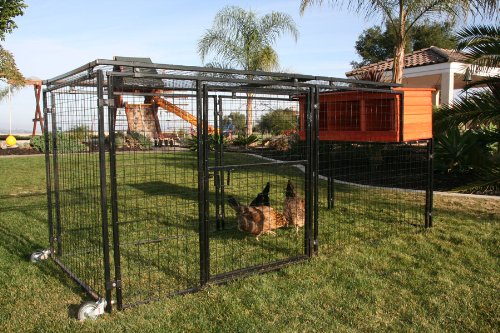 Mobile-Chicken-Coop-Spring-Fling