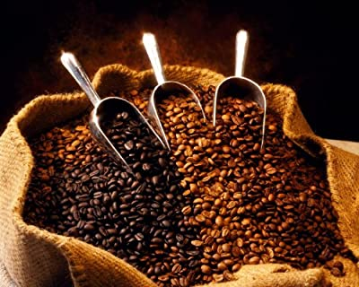 Bolivian Organic Fair Trade-fecafeb Coffee Beans