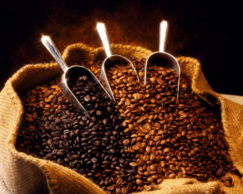 Tanzania Northern Peaberry Unroasted Coffee Beans, 5 Pounds