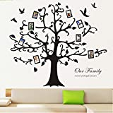 "Homecube 100"" x 100"" Huge XXXL Black Photo Picture Frame Tree Wall Decal Removable Sticker Decorative Supplies Vinyl Art Decor (Large Upward)"