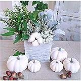 amidoa Artificial Lifelike White Pumpkin Rustic