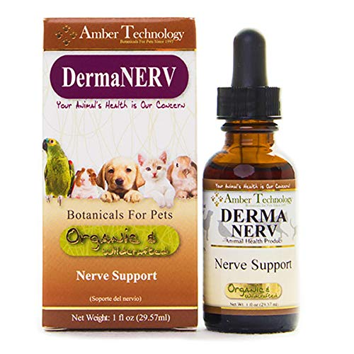 Amber Technology DermaNERV Nerve Support for Pets, 1 oz.