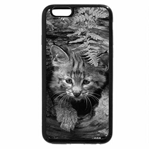 iPhone 6S Plus Case, iPhone 6 Plus Case (Black & White) - Bobcat Kitten