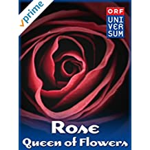 Rose - Queen of Flowers
