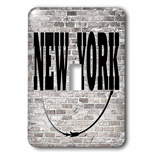 3dRose RinaPiro - US States - New York. State Capital is Albany. - Light Switch Covers - single toggle switch - Outlet Albany