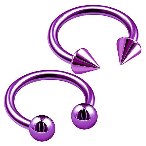bodyjewellery 2pcs 16g 8mm Purple titanium circular barbells lip ear helix snake bite cartilage tragus septum nose ring eyebrow (Purple Titanium Ring)
