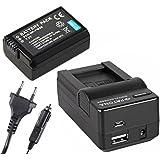 2in1-SET für die Sony DSC-RX10 / RX10 --- Akku (1080mAh) + 4in1 Ladegerät (u.a. mit USB / micro-USB und Kfz/Auto)