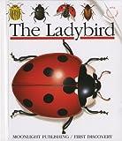Ladybird, Sylvaine Perols, 1851030891