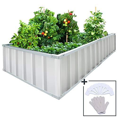 (KING BIRD Extra-Thick 2-Ply Reinforced Card Frame Raised Garden Bed 68''x36''x12'' Galvanized Steel Metal Planter Kit Box with 8pcs T-Types Tag & 1 Pair of Gloves Ivory, Easy for DIY Color )
