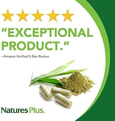 NaturesPlus Gingko-Combo - 120 mg, 90 Vegetarian Capsules - Ginkgo Biloba Brain Support Supplement - Gluten-Free - 90 Servings