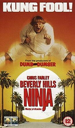 Beverly Hills Ninja [Reino Unido] [VHS]: Amazon.es: Chris ...