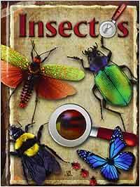 Insectos (Libros Zoom): Amazon.es: Equipo Editorial: Libros