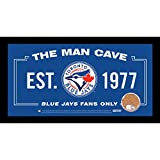 Toronto Blue Jays Man Cave Sign 6 inch x 12 inch Custom Framed Photo With Authentic Game-used Dirt MLB Major League Baseball Authenticated