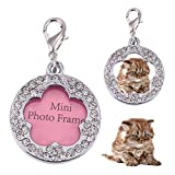 Dog Cat Anti Lost ID Tags Crystal Round Photo Frame Plum Shape Pet Jewelry