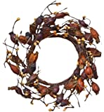 CWI Gifts Dried Rosehip Wreath, 10-Inch