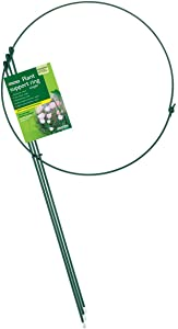 "Gardman R752 Single Hoop Plant Support Ring, 16"" Wide x 24"" High, 3 Legs"