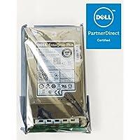 Dell ASSY HD 300 SASE 15 2.5 SGT FR, F2C53
