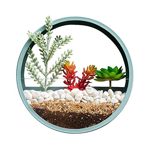 Juyou Morden Round Indoor Wall Succulent Hanging Planter, Metal Decorative Freestanding Mount Holder with Glass for Air Plants, Faux Flower,10