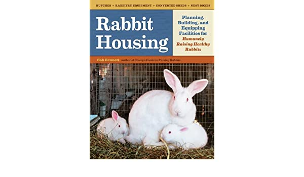 rabbit housing planning building and equipping facilities for