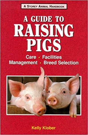 Pig Farming Equipment Guide 3 Quick Tips To Guide You On Raising Healthy Pigs