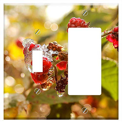 (1-Toggle 1-Rocker/GFCI Combination Wall Plate Cover - Blackberry Autumn Ice Glamour Light Plant Nat)
